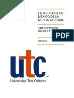 LA INDUSTRIA EN MEXICO DE LA MERCADOTECNIA.docx
