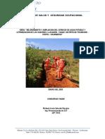 Informe de Seguridad y Salud Ocupacional en El Trabajo