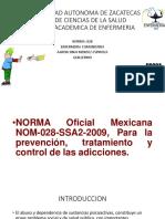 norma 028.pptx