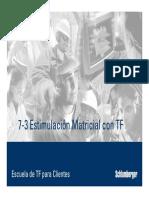 7-3 Estimulación Matricial con TF.pdf