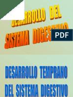 11. DESARROLLO APARATO DIGESTIVO 1.ppt
