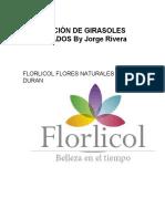 Girasoles Liofilizados by Jorge Rivera