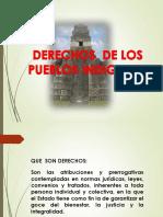 DERECHOS DE LOS PUEBLOS INDIGENAS.CUNSOL.pdf
