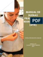 MANUAL-BPM (1).pdf