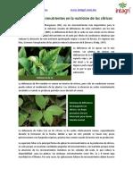 06. Micronutrientes en citricos
