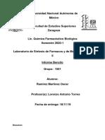 Informe Bencilo.docx