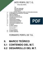 FORMATO PERFIL DE T.G