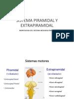 8 IB SISTEMA PIRAMIDAL Y EXTRAPIRAMIDAL.pptx