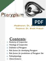 PTERIGIUM.pdf