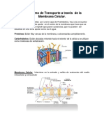 resumen 3 Mecanismo de Transporte a través  de la Membrana Celular