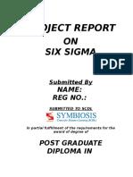 2. Six Sigma Project