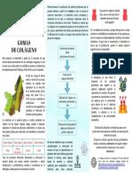 Eq6E6 poster.pdf
