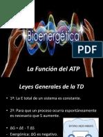 bioenergeticaox-131030003141-phpapp01