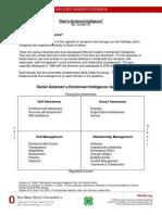 Emotional Intelligence Background.pdf