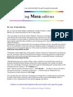 musa varieties list