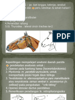 ANATOMI TOPOGRAFI KEPALA-PAROTIS