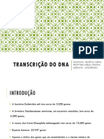 TEMA 7_TRANSCRIÇÃO DO DNA