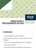 TEMA 7_TRANSCRIÇÃO DO DNA_VERSÃO FINAL.pdf