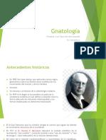 Gnatología