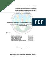 Diagnostico Extensión Agricola modificado.docx