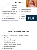 Pharynx, Palatine tonsil, Auditory tube