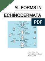 Echinoderm Larvae.pdf
