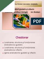 analizatorii_gustativ_si_olfactiv.pptx