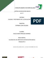 MAPA MENTAL CALIDAD EN LOS SERVICIOS DE EDUCACIÓN BÁSICA
