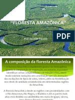 FLORESTAMAZONICA