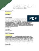 Guía Primer Parcial AnatoPatoEspecial