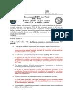 Microeconomía I (250) Segundo Parcial 2do 2015 - San Isidro - resuelto