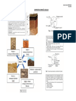 Chimie - Constitutia si compozitia chimica a solului - Plansa