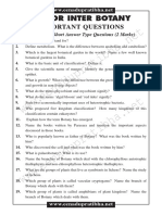 juniorinter-botony-questions-em-5