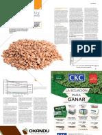 Almacenamiento y acondicionamiento de trigo