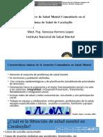 roldelcentrodesaludmentalcomunitarioen-150906180505-lva1-app6891