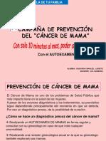CAMPAÑA CANCER MAMA LIZ.ppt