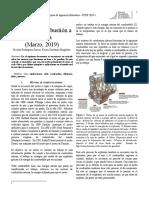 Informe 2 FCOP.pdf