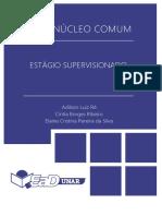 Passo a Passo - Estágio Supervisionado Ped.pdf