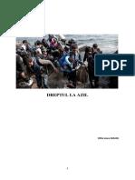 Dreptul la azil