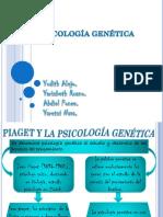 238471698-Psicologia-genetica.pptx