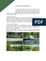 centroamerica  vegetacion y mas