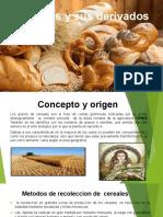 Cereales y sus derivados 2 t terminado ya.pptx