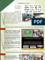 PSICOLOGO EDUCATIVO. FUNCIONES EN AMBENTES REALES