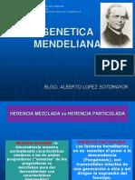 2. GENETICA MENDLIANA 2013