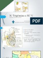 Nervio Trigémino NC V