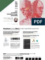 multiphotonsegmentation2bvasculature-190808162232