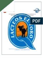 Trabajo Proyecto Final II Semestre Lacteos El Toro Ltda.
