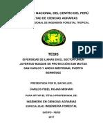 Diversidad de lianas en Satipo.pdf