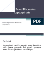 CBD leptospirosis
