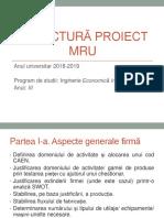 Structura proiect MRU